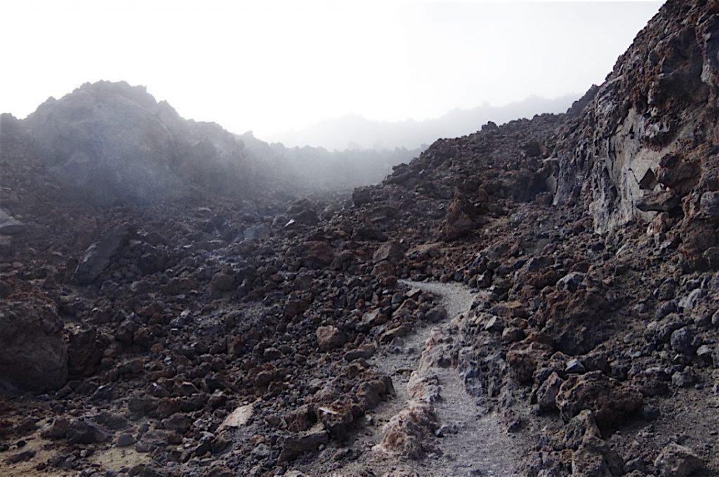 lavasteinweg-im-nebel